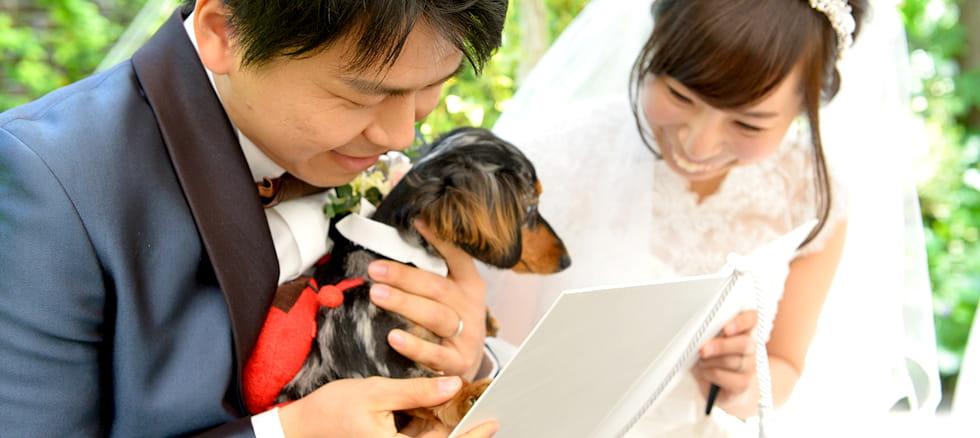 ペット結婚式・ウェディング
