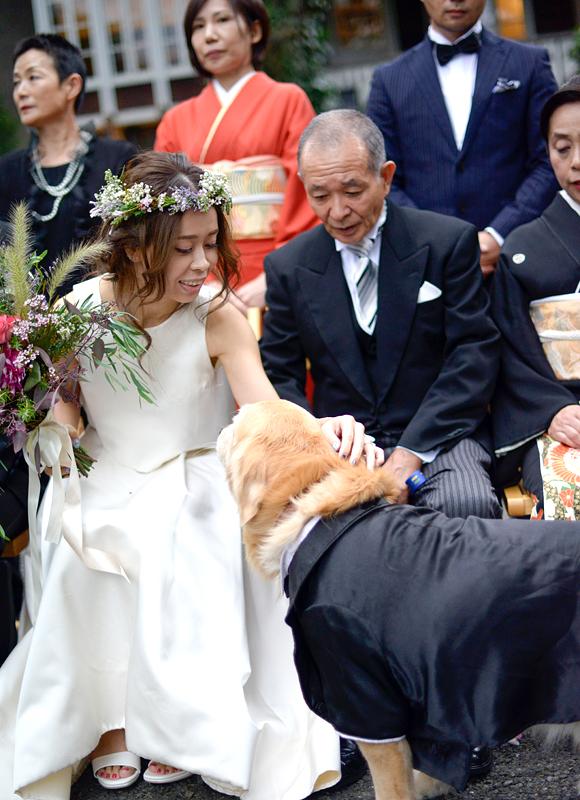 愛犬も家族の一員♪集合写真にももちろんご一緒に♪