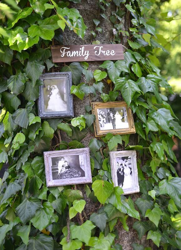 「FAMILY TREE♪」 公園の自然の樹が演出に早代わり♪